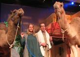 Our camels on stage at Faith Bible Church in Arvada, CO during an Easter play.